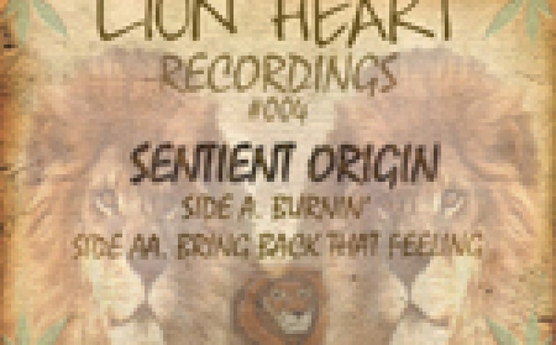 Sentient Origin - Bring Back That Feeling