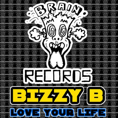 BIZZY B LOVE YOUR LIFE ( WAV  )